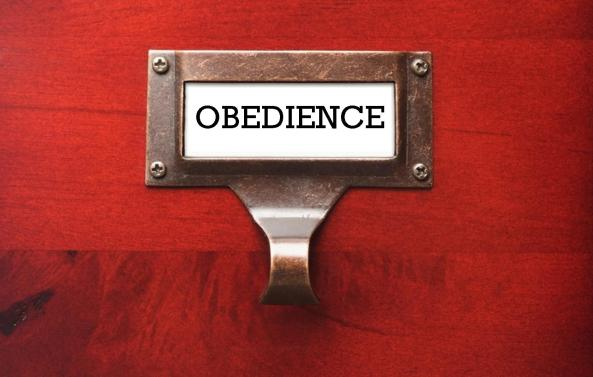 Image result for obedience