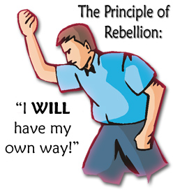 10_principle-rebellion